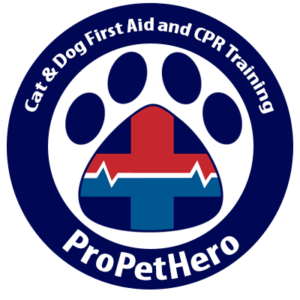 Cat and Dog First Aid Training