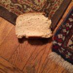 cat eats bread