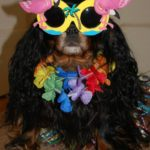 hula girl dog