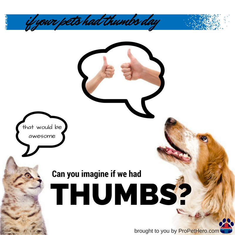 If your pets had thumbs day