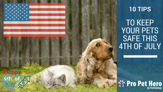 4th of July safety tips for pets