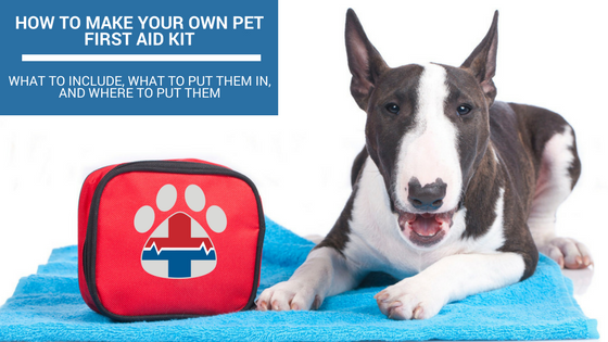 how to make your own pet first aid kit