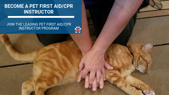 how to become a pet first aid instructor